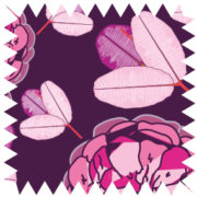 zz10-Flora purple